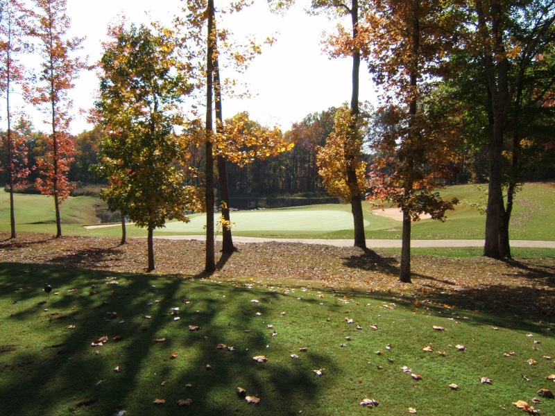 St Andrews Golf and Country Club - Atlanta Golf